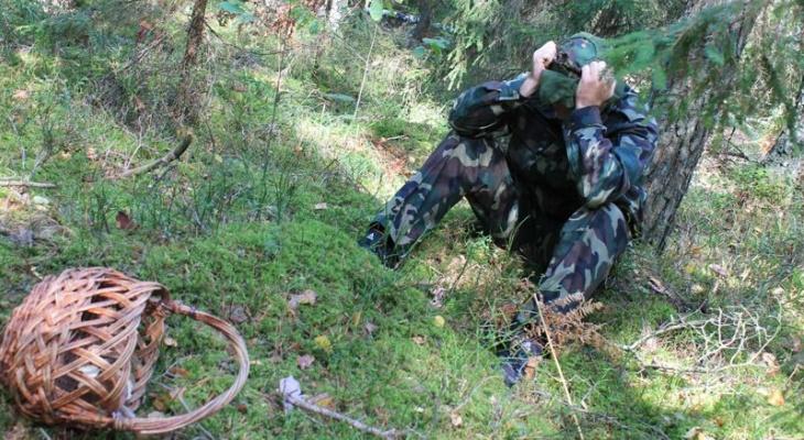 Под Ухтой пропал рыбак, который пошел за грибами