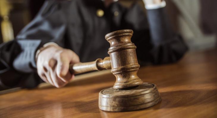 В Ухте инспектора Россельхознадзора осудили за взятку в полмиллиона