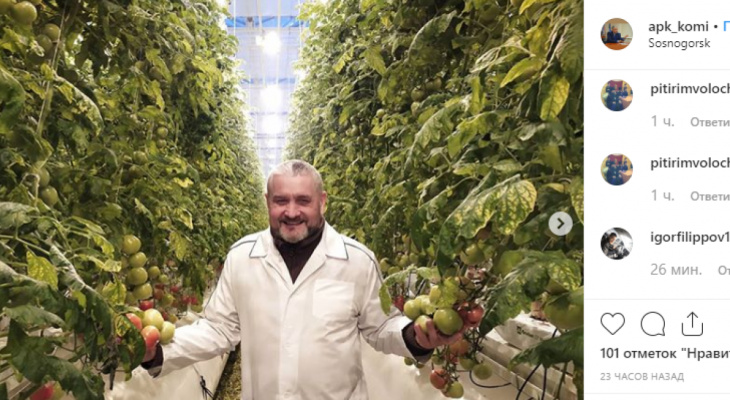 Жители Сосногорска впервые попробуют овощи из местных теплиц