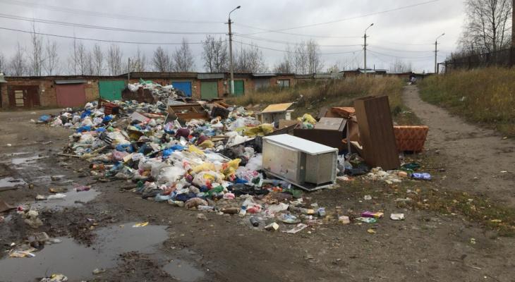 В Сосногорске экоактивисты устроили акцию против полиэтиленовых пакетов