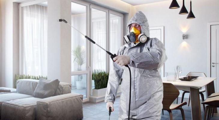 Как обезопасить квартиру от опасных вирусов?