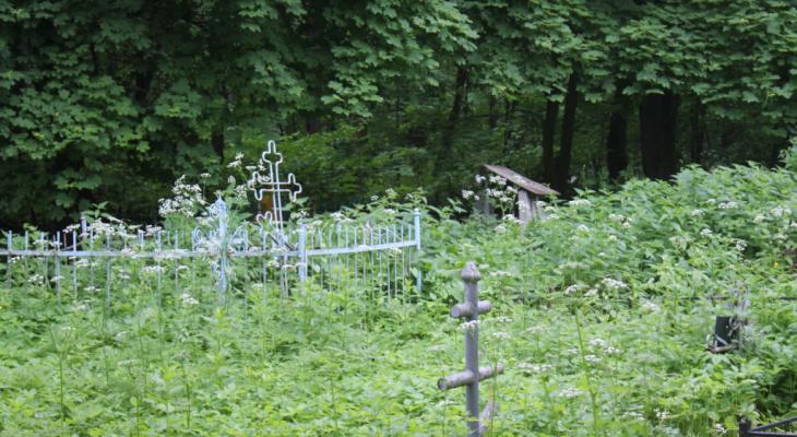 """На кладбище """"Куратово"""" в Ухте скосят траву и установят бункер"""