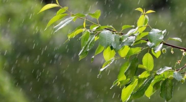 В Ухте ожидается очень теплая погода с грозой