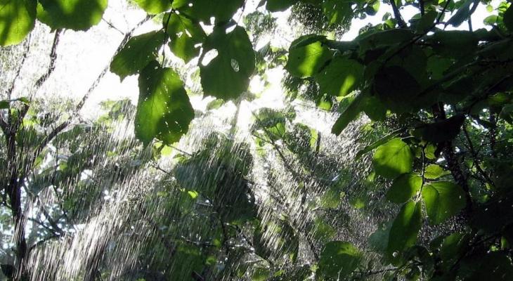 В Ухте ожидается похолодание с дождем
