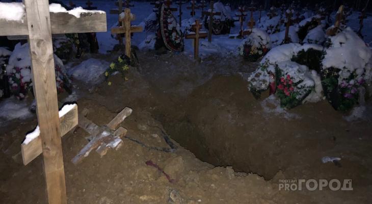 Пятница 13-е: медведь в Ухте раскопал могилу и утащил покойницу в лес