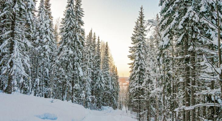 Погода в Ухте: Неужели холода отступают?