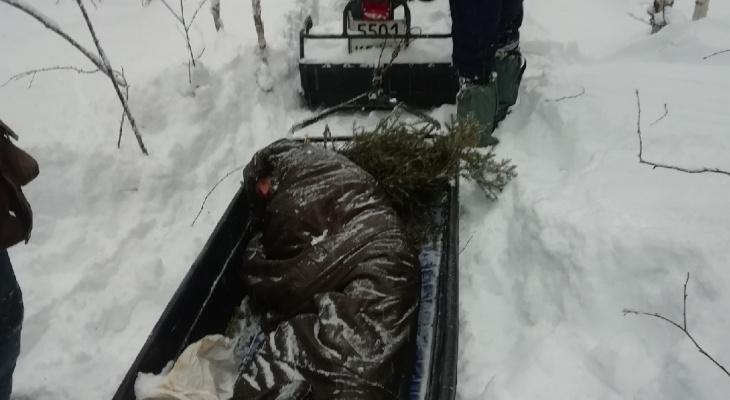 Февральские морозы оказались фатальными для нескольких жителей Коми