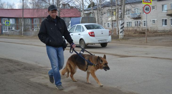 В Коми собака-поводырь вернула незрячему любовь к жизни