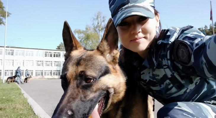 """""""Хороший нюх!"""": В Коми служебная собака помогла найти похищенную водку"""