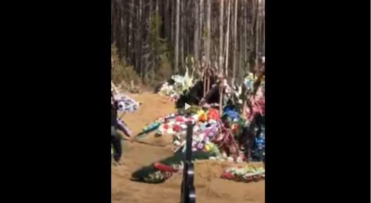 """Очевидцы: """"осторожно в Ухте по кладбищу бегает медведь!"""""""