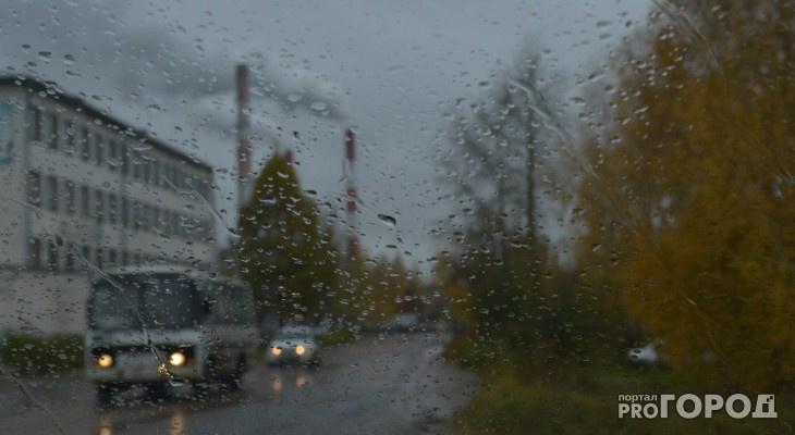 Ухту зальет дождем: синоптики дали прогноз погоды в Коми на май